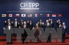 Phiên họp Hội đồng CPTPP xem xét đơn xin gia nhập của Anh