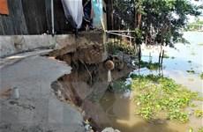 An Giang xuất hiện hai đoạn sạt lở dài 50m tại huyện Chợ Mới