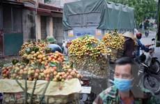 Quản lý thị trường hỗ trợ Bắc Giang tiêu thụ 3.000 tấn vải thiều