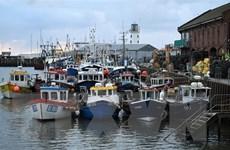 Liên minh châu Âu và Anh đạt thỏa thuận về quyền đánh bắt cá năm 2021