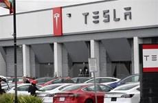 Đơn đặt hàng của Tesla tại Trung Quốc giảm 50% trong tháng 5