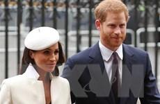 Vợ chồng Hoàng tử Harry chào đón sự ra đời của con gái Lilibet Diana