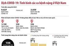 [Infographics] Tình hình các ca bệnh COVID-19 nặng ở Việt Nam