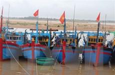 Các tỉnh từ Quảng Ninh đến Khánh Hòa chủ động ứng phó với vùng áp thấp