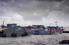 Chủ động ứng phó với áp thấp nhiệt đới có khả năng mạnh thành bão