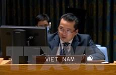 HĐBA thảo luận về chiến binh nước ngoài và lính đánh thuê tại Libya