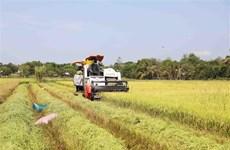 Doanh nghiệp Australia quan tâm đến công nghệ nông nghiệp ở Việt Nam