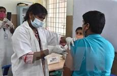 Số ca mắc COVID-19 ở Mỹ và Ấn Độ giảm mạnh nhờ tiêm vaccine