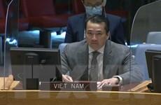 Kêu gọi giải quyết thách thức an ninh, nhân đạo ở CH Trung Phi, Syria