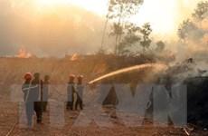 Thừa Thiên-Huế: Cơ bản dập tắt nhiều điểm cháy tại thị xã Hương Thủy