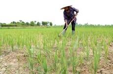 Các tỉnh Trung Bộ ít mưa hơn, tiếp tục thiếu nước cục bộ