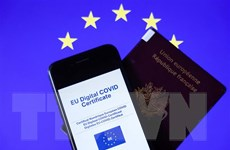 Chứng chỉ xanh về COVID-19 - 'giấy thông hành' ở châu Âu