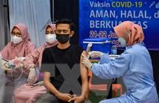 Dịch COVID-19 sáng 2/8: Thế giới ghi nhận gần 199 triệu người mắc bệnh