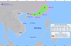 Quảng Ninh đến Thừa Thiên-Huế chủ động ứng phó với áp thấp nhiệt đới