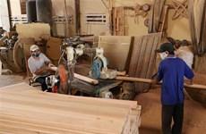 Bộ Tài chính: Chưa phù hợp để tăng thuế xuất khẩu gỗ dán