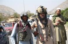 Tình hình Afghanistan: Đức muốn đàm phán trực tiếp với Taliban