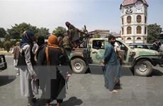 Taliban tìm kiếm sự hợp tác với cựu thống đốc và quan chức các tỉnh