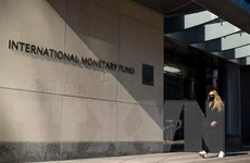 IMF khởi động đợt phân bổ Quyền rút vốn đặc biệt lớn nhất