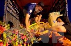 Tiền Giang cung ứng hàng nông sản phục vụ thị trường phía Nam