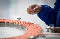 Chile cấp phép sử dụng vaccine của Sinovac cho trẻ em trên 6 tuổi