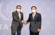 Chủ tịch Quốc hội Vương Đình Huệ gặp Tổng Giám đốc IAEA