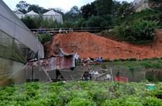 Lâm Đồng: Trú mưa trong chòi để nông cụ, 4 người bị vùi lấp