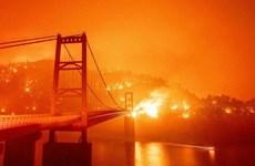 Covering Climate Now vinh danh phóng viên đưa tin về biến đổi khí hậu