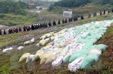 Quảng Ninh: Chủ động thực hiện các biện pháp phòng, chống bão số 7