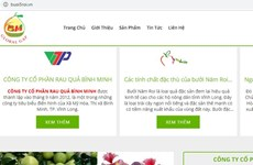 Nông sản Vĩnh Long lên sàn thương mại điện tử với tên miền '.vn'