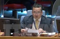 Việt Nam đề cao các giải pháp hòa bình lâu dài cho Kosovo