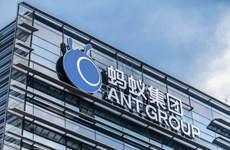Trung Quốc điều tra quan hệ giữa định chế tài chính và doanh nghiệp