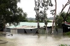 Hỗ trợ người dân Quảng Nam, Quảng Ngãi bị ảnh hưởng bởi mưa lũ