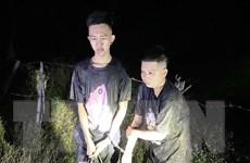 Tây Ninh liên tiếp phát hiện các trường hợp xuất, nhập cảnh trái phép