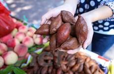 """Người dân tò mò với loại quả """"lạ"""" xuất hiện trên đường phố Hà Nội"""