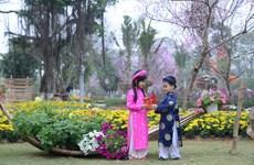 Lễ hội hoa Xuân 2017 tôn vinh Di sản tín ngưỡng thờ Mẫu Tam phủ