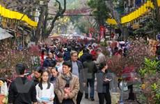 Chợ hoa Hàng Lược nhộn nhịp trong những ngày giáp Tết