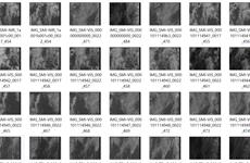 Những bức ảnh đầu tiên từ vệ tinh MicroDragon của Việt Nam