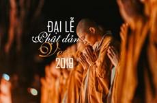 Đại lễ Vesak 2019: Thông điệp về một thế giới hòa bình, yêu thương