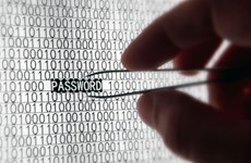Số nạn nhân bị đánh cắp mật khẩu tăng mạnh vào nửa đầu năm 2019