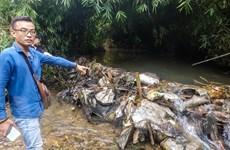 Khởi tố hình sự vụ án đổ dầu thải xuống đầu nguồn nước sông Đà