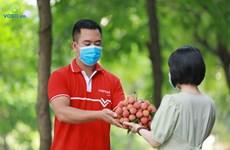 'Hành trình số' của trái vải từ vườn đến bàn ăn người tiêu dùng