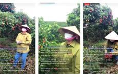 Livestream trên Sendo, nông dân Bắc Giang bán 8 tấn vải trong 40 phút