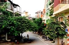 """Phố Trịnh Công Sơn ở Hà Nội: """"Một con đường nhỏ trả lời cho tôi"""""""