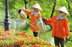 Hà Nội: Sôi động không khí chuẩn bị cho kỳ nghỉ Tết dương lịch