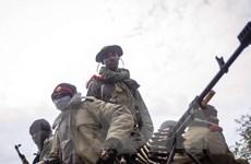 Chính phủ Mali và 6 nhóm vũ trang ký thỏa thuận chấm dứt thù địch