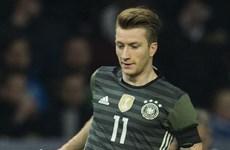 Tuyển Đức chốt danh sách dự EURO: Cú sốc mang tên Marco Reus