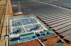 BIM Group khánh thành cụm nhà máy điện mặt trời lớn nhất Đông Nam Á