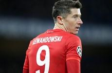 Bayern Munich sẽ 'mất' siêu tiền đạo Robert Lewandowski trong 4 tuần