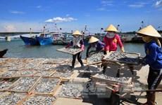 [Video] Hai năm sau sự cố môi trường biển miền Trung