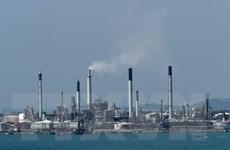 Giá dầu châu Á giảm do khả năng OPEC tăng sản lượng